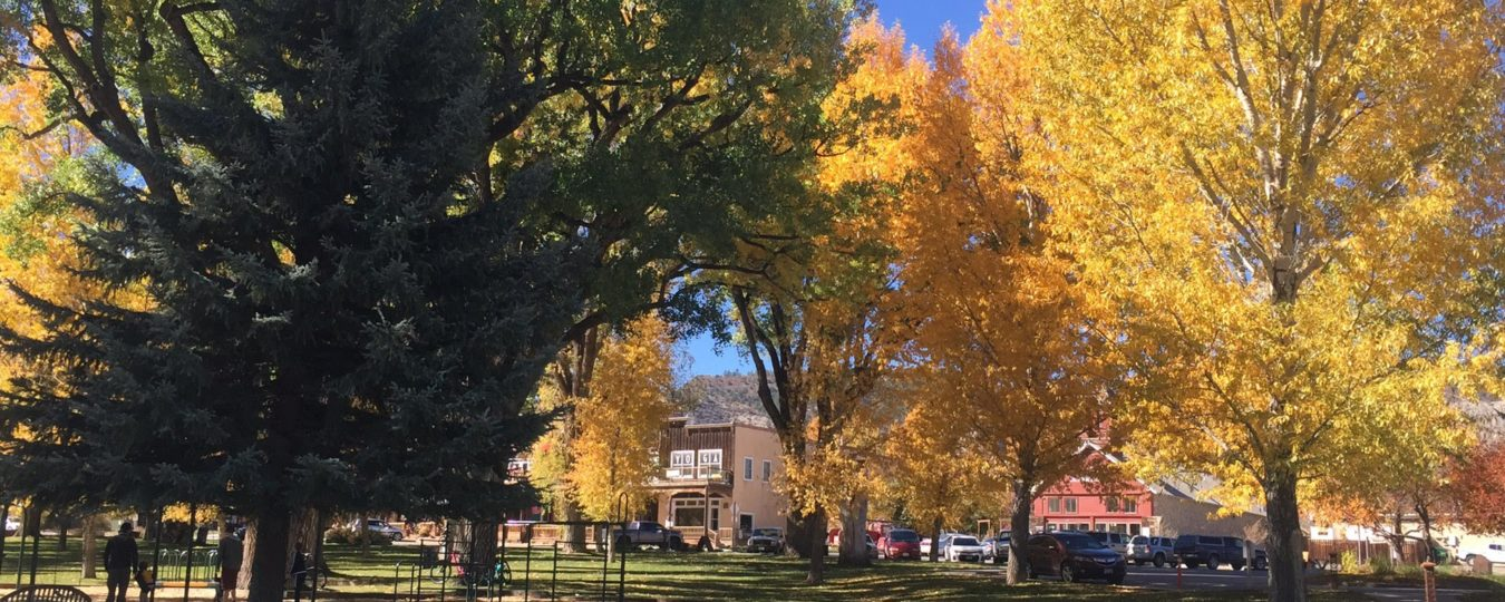 Ridgway Town Park in the Fall